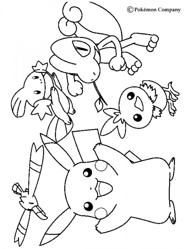 Wingull mudkip pikachu treecko and torchic coloring for Treecko coloring pages