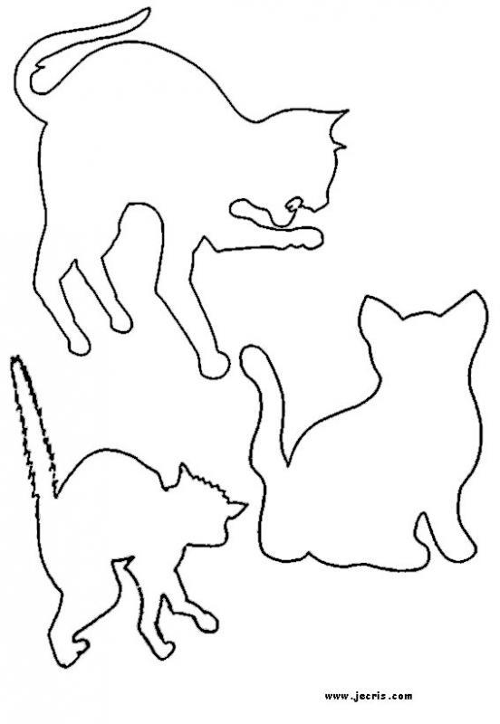 cat_stencil
