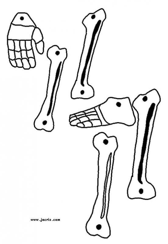 skeleton_decoration