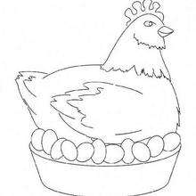 Easter Chicken coloring page