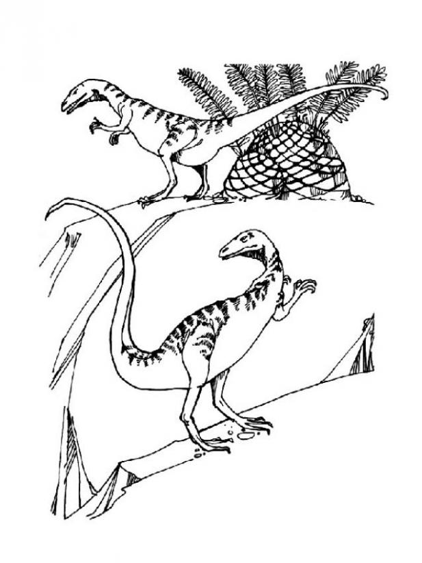 Coloring Pages Of Prehistoric Animals : Prehistoric carnivor coloring pages hellokids