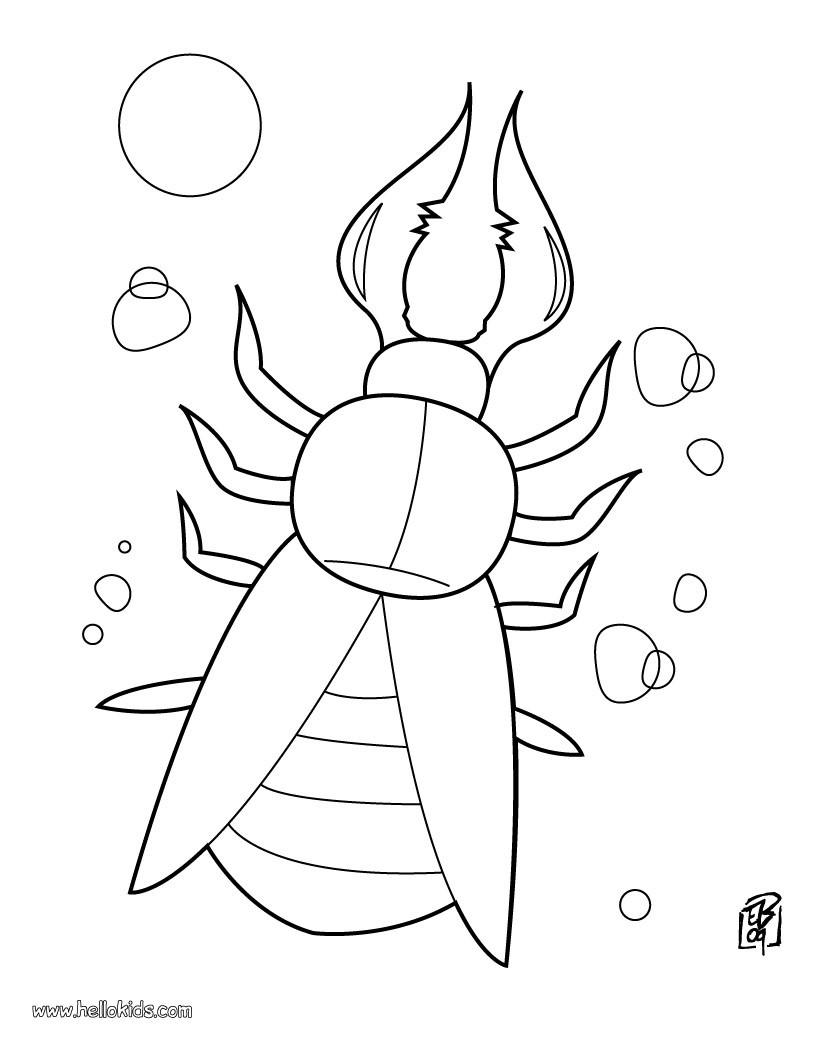 strange beetle coloring pages hellokids com