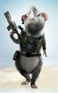 How to take care of a guinea pig - Hamster agent secret ...