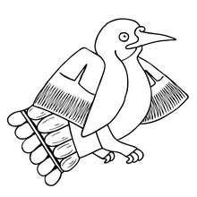Colibri coloring page