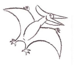 pteranodon-step4