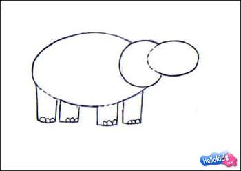 how to draw hippopotamus step3