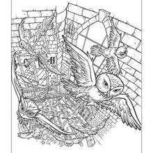 Harry Potter Coloring Pages 33 Harry Potter Online Coloring Sheets Harry Potter Printable Coloring Book