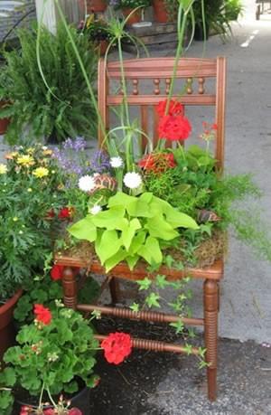 Container Garden - GARDENING