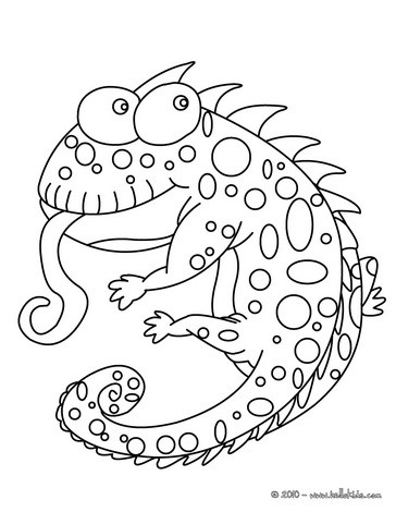 chameleon coloring pages funny chameleon