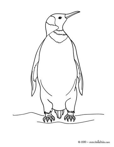 Penguin coloring pages Hellokidscom