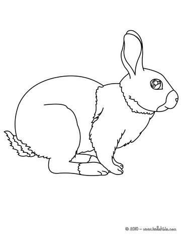 FARM ANIMAL coloring pages  55 free Farm animals coloring pages
