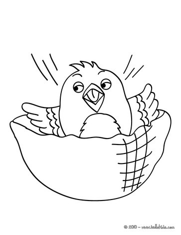 Canary Coloring Page Color Online Print Common Kingfisher