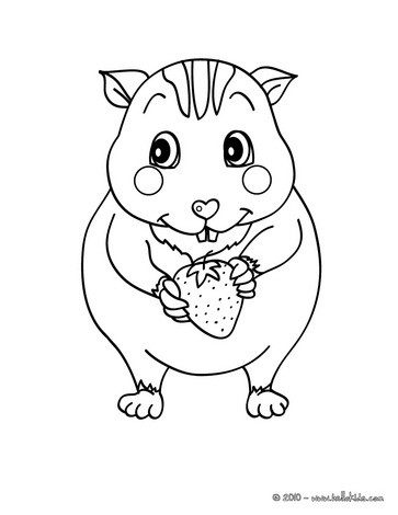 Coloriage Hamster Kawaii.Kawaii Hamster Coloring Pages Hellokids Com