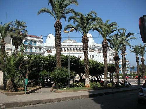 My Holidays in Algeria