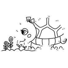 Turtle dot to dot game