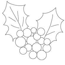 Christmas holly coloring page - Coloring page - HOLIDAY coloring pages - CHRISTMAS coloring pages - CHRISTMAS ORNAMENTS coloring pages