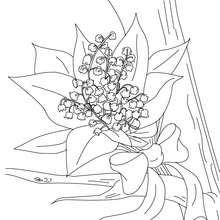 Lily of the Valley bunch coloring page - Coloring page - NATURE coloring pages - FLOWER coloring pages - LILY OF THE VALLEY coloring pages