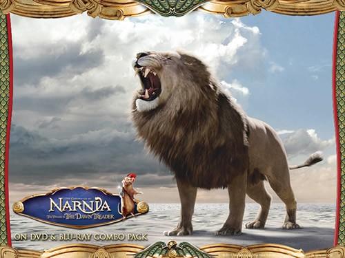 Aslan wallpaper