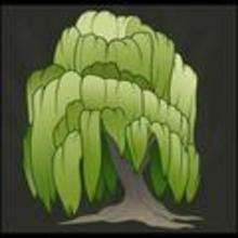 How to Draw a Willow Tree, Weeping Willow - Drawing for kids - Drawing tutorials step by step - Trees
