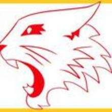 How to Draw High School Musical Wildcats Logo - Drawing for kids - Drawing tutorials step by step - Disney