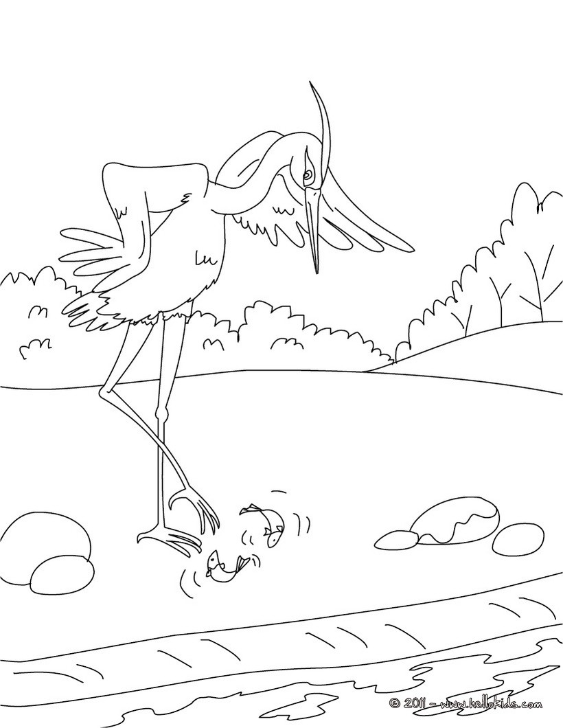 aesops fables and coloring pages - photo#32