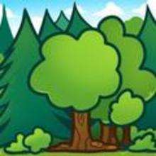 How to Draw Trees for Kids - Drawing for kids - Drawing tutorials step by step - Trees