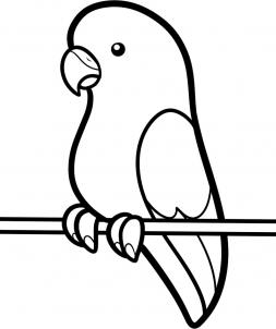 How To Draw How To Draw A Parakeet For Kids Hellokids Com