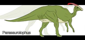 How to draw how to draw a parasaurolophus