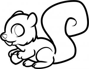 how to draw how to draw a squirrel for kids hellokids com