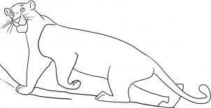 How to draw how to draw bagheera from the jungle book ...