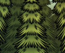 How to Draw a Spruce Tree - Drawing for kids - Drawing tutorials step by step - Trees