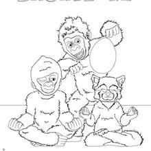 The white Gorilla coloring page