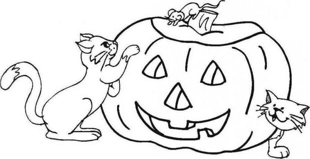 Enlightened pumpkin and cats coloring pages - Hellokids.com