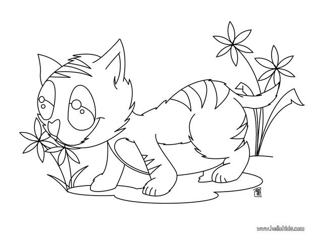 Kitten eating flowers coloring pages - Hellokids.com