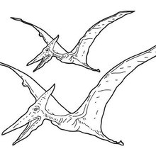 Pterosaur coloring page