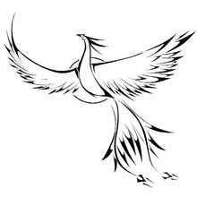 Phoenix Coloring Pages Drawing For Kids Videos Reading Learning Crafts And Activities Daily News Free Online Games