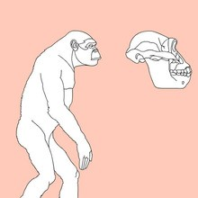 prehistoric, AUSTRALOPITHECUS coloring pages