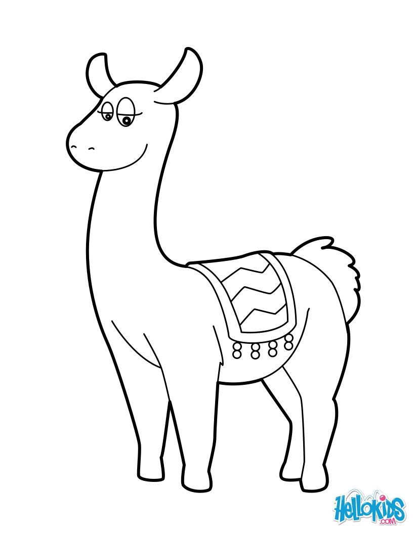 lama coloring pages  hellokids