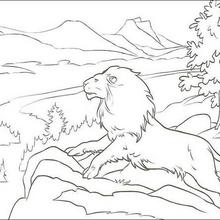 The Lion Aslan Coloring Page