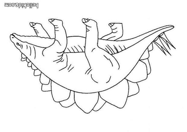 Stegosaurus coloring pages Hellokidscom