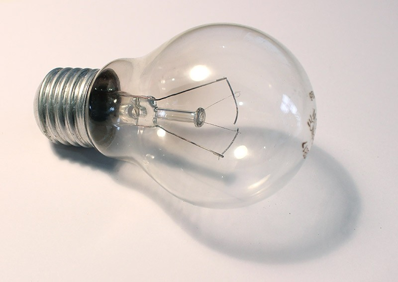 Garden Bulbs report