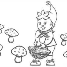Noddy Picks Mushrooms