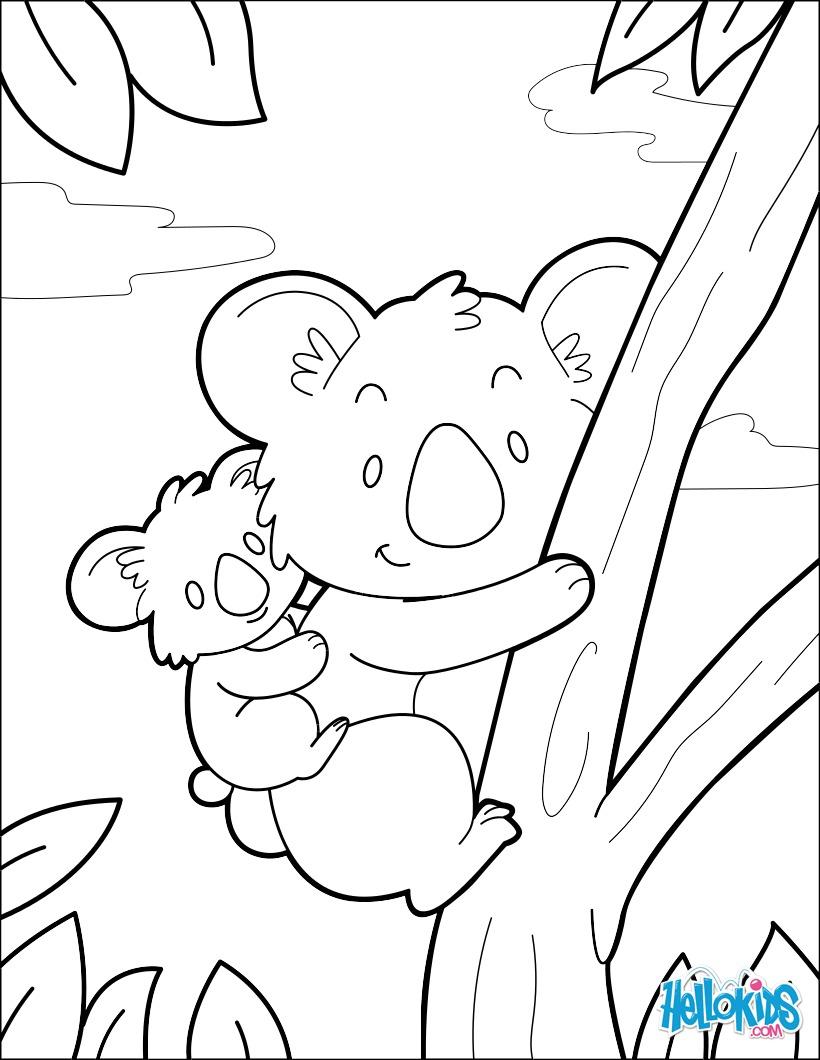 Koala coloring pages - Hellokids.com
