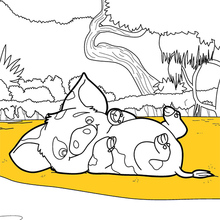 Moana - Pua coloring page
