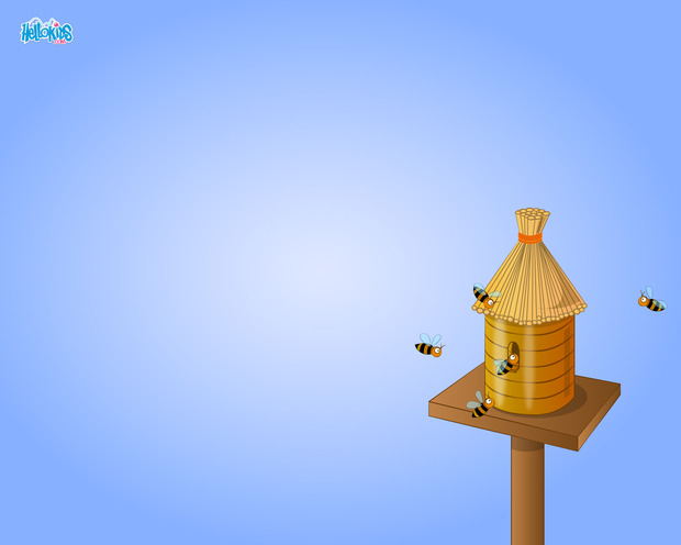 Small Hive House