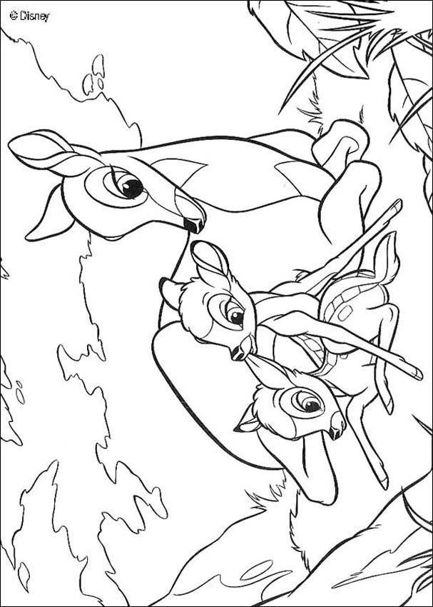 Bambi coloring pages bambi 54 for Coloring pages bambi