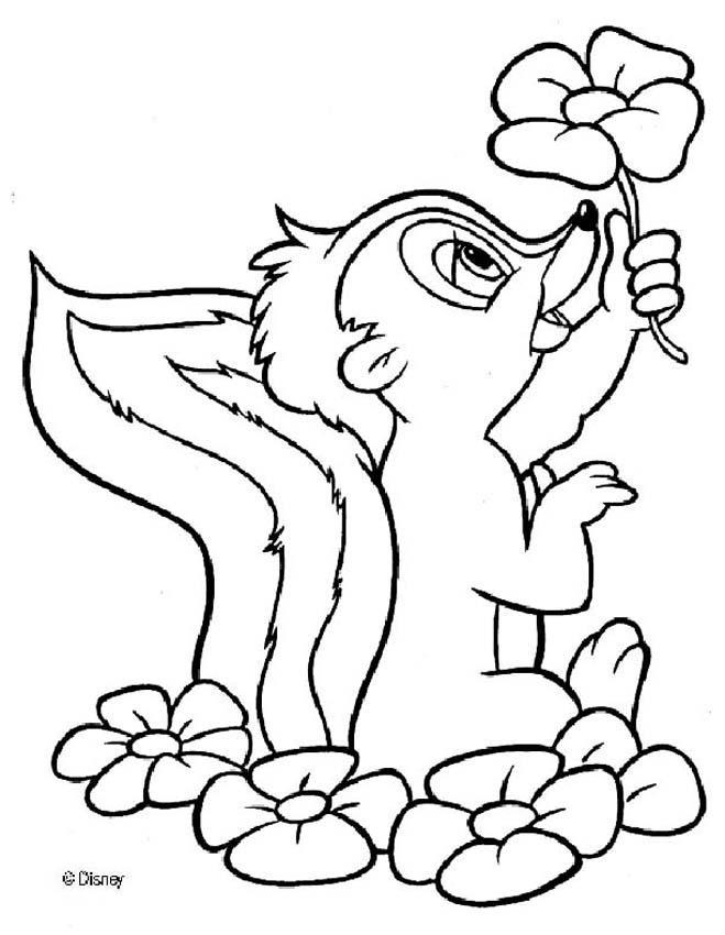 preschool plant coloring pages | Celebrity gossips and images: flower coloring pages preschool
