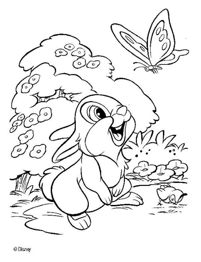 Thumper 7 coloring pages - Hellokids.com