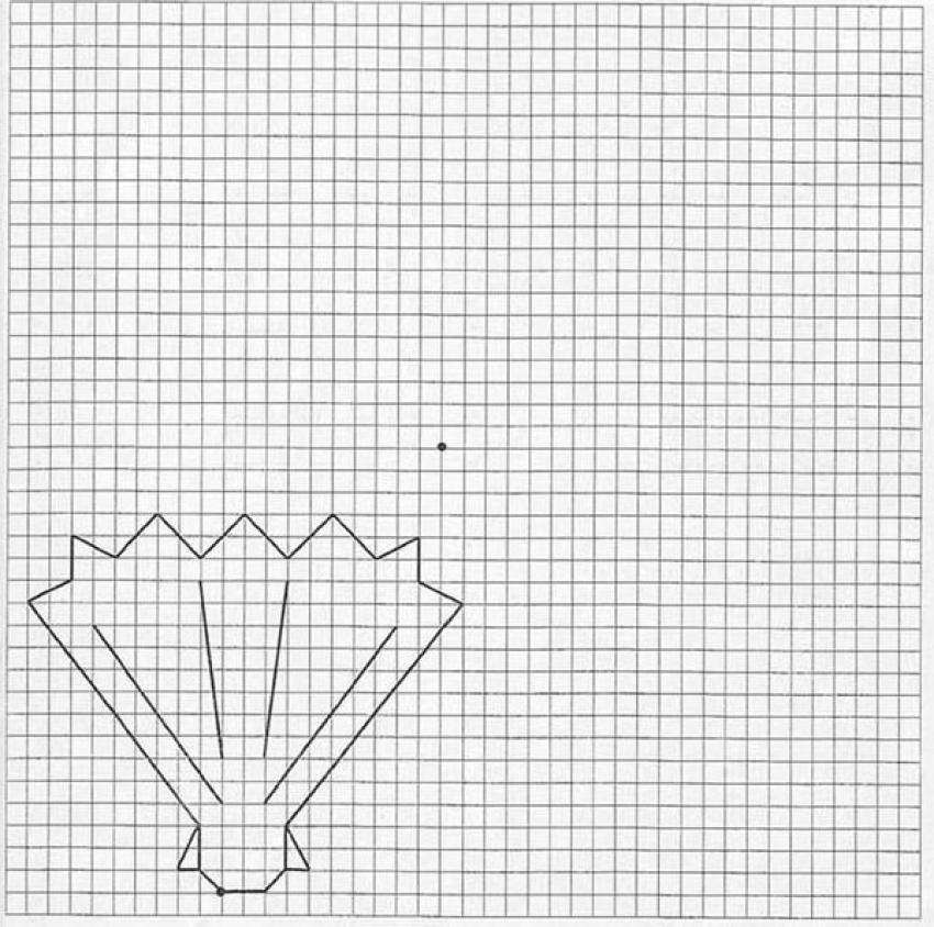 how to draw shell hellokidscom