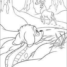 Bambi  2 - Coloring page - DISNEY coloring pages - BAMBI coloring pages